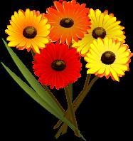Květina k svátku pro ženu